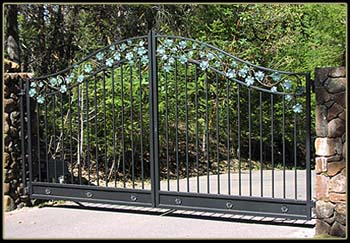Grape Vine Gate